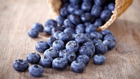 foods blueberries